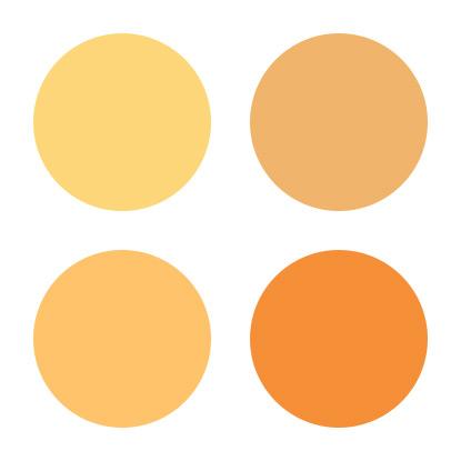 オータムタイプのファンデーションカラー